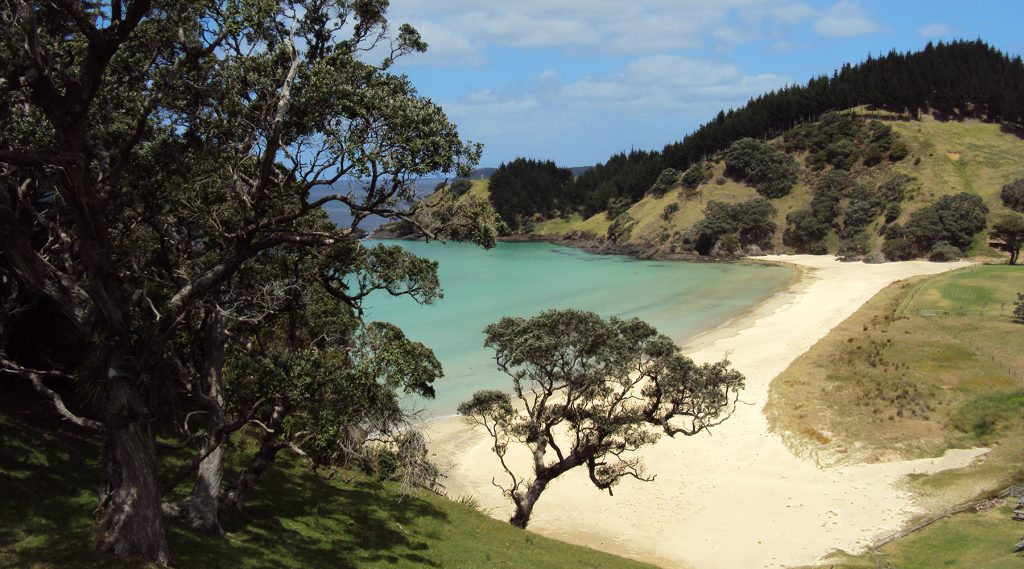 Five Tranquil & Diverse Stays On Waiheke Island This